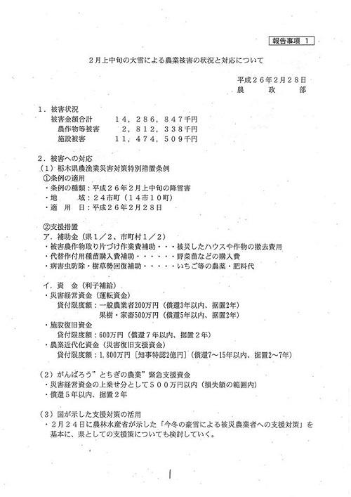 栃木県議会≪第322回 通常会議≫常任委員会!/大雪被害 徐々に明らかに…!②