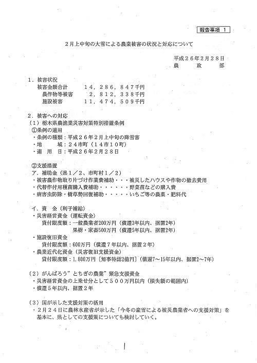 栃木県議会≪第322回 通常会議≫常任委員会!/大雪被害 徐々に明らかに…!⑥