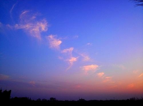 渡良瀬遊水池からの夕陽!①