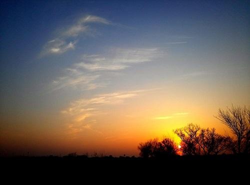渡良瀬遊水池からの夕陽!②