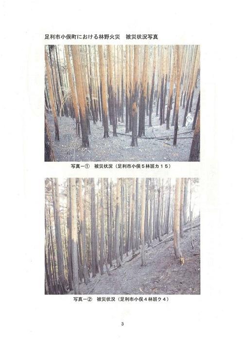 栃木県議会<農林環境委員会>開催される!環境森林部編 その2③
