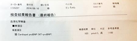 blog_000003779.jpg