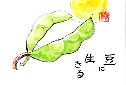 枝豆0726