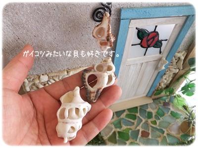 2014_04050035.jpg