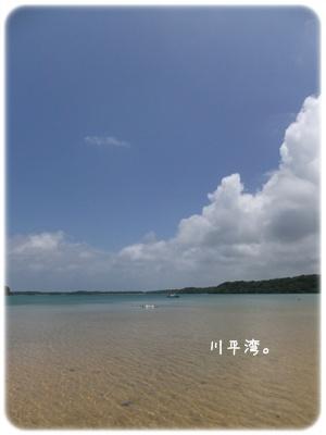 2014_08150019.jpg