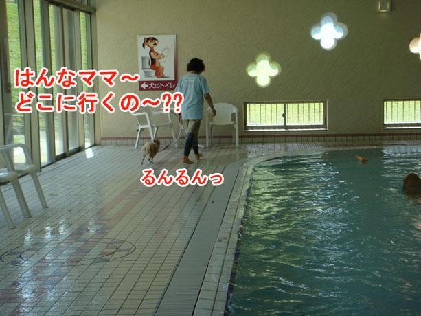 2014_09_13-06.jpg