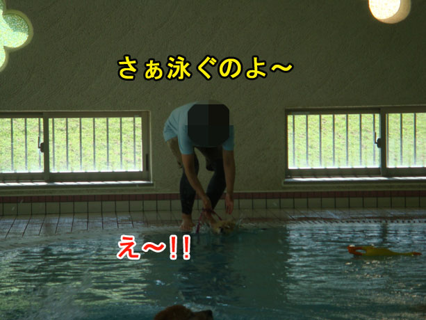 2014_09_13-07.jpg