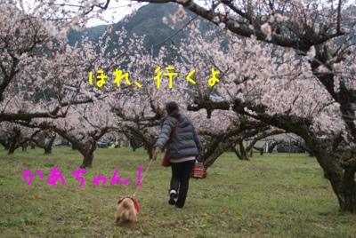 fc2blog_20140321180302062.jpg