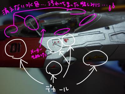 P1010117_1.jpg